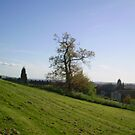 Seacroft tree view 1 by atombat