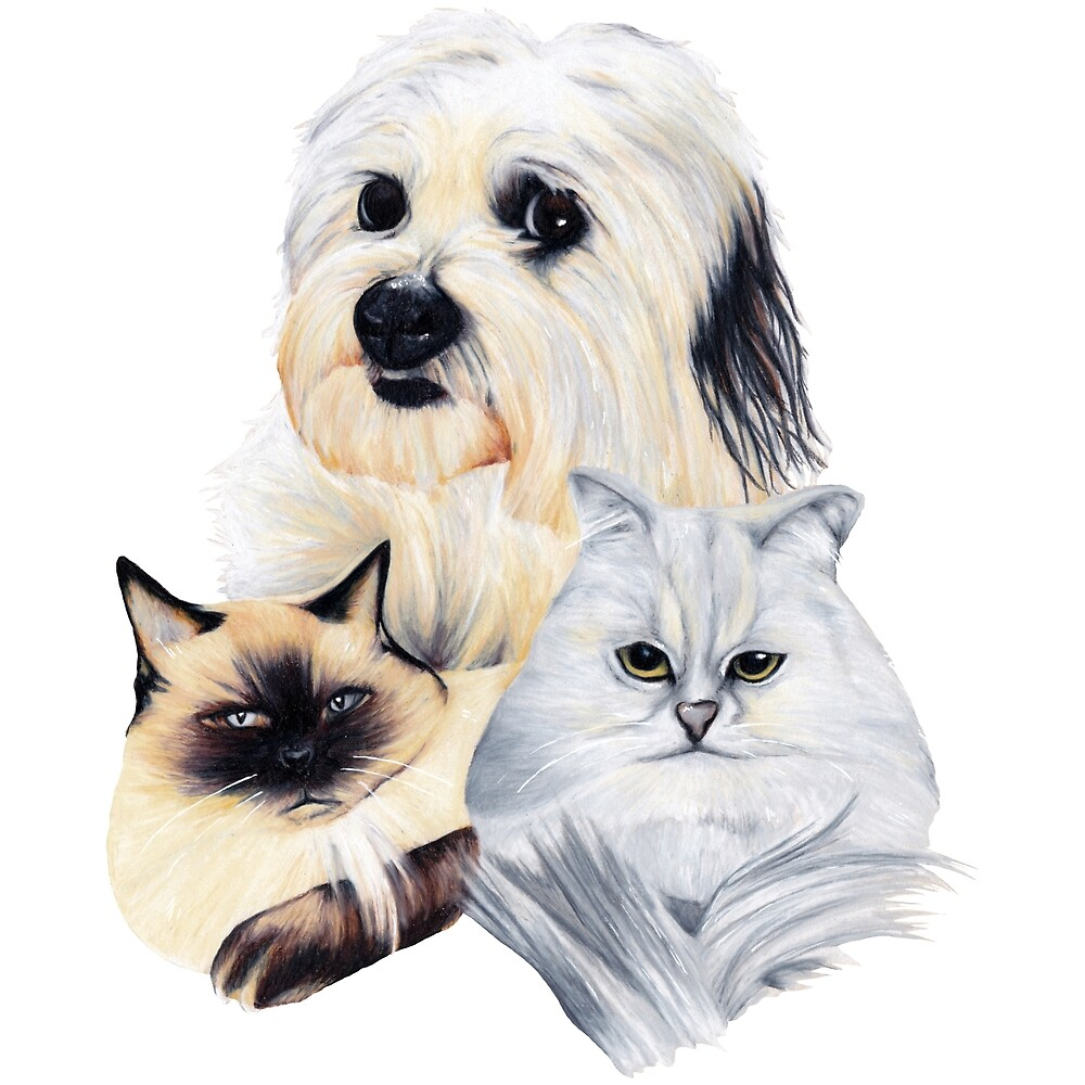 2 Cats and a Puppy by Apatche Revealed