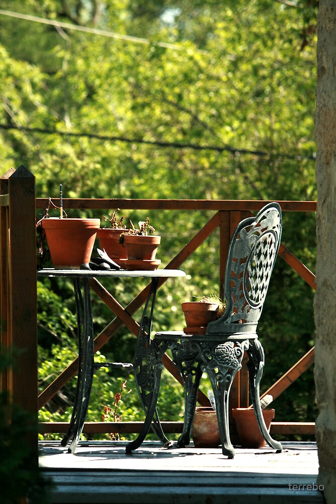 Backyard Chair And Table by terrebo