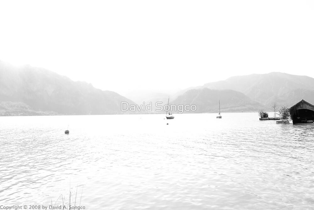 Salzburg Lake District Black and White by David Songco