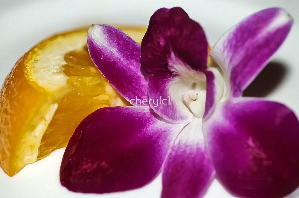 Flower and orange by cherylc1