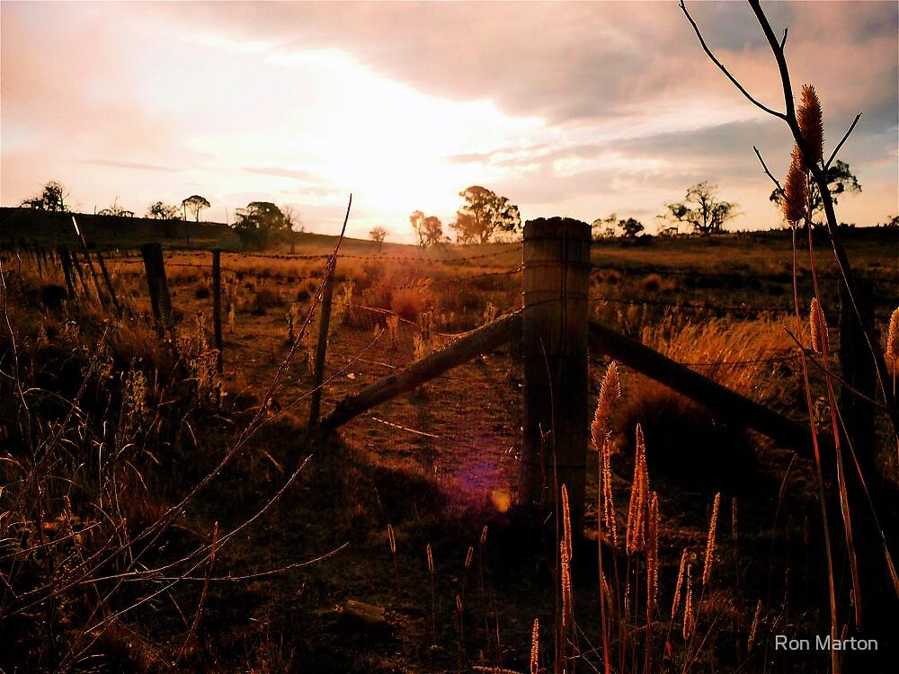 Adaminaby Sunset by Ron Marton