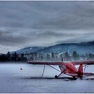 Red Plane in a Gathering Storm by Wayne King