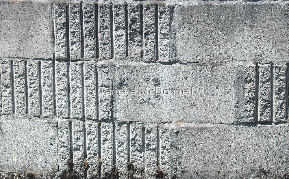Stone Wall by Tamara Lindsey