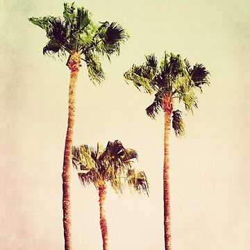 PASTEL PALM TREES no2 by aCVPia