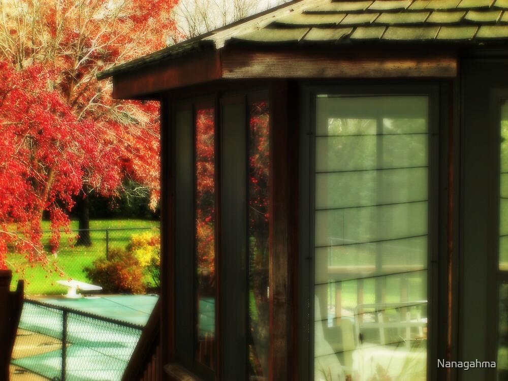 Backyard Autumn Reflections by Nanagahma