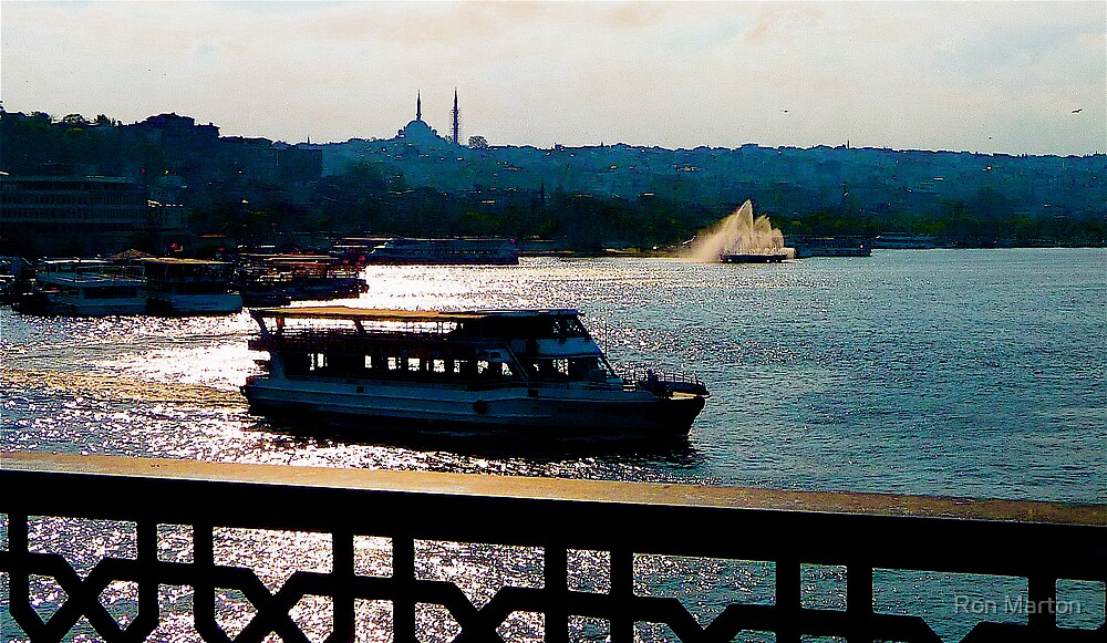 Istanbul Backlit 1 by Ron Marton