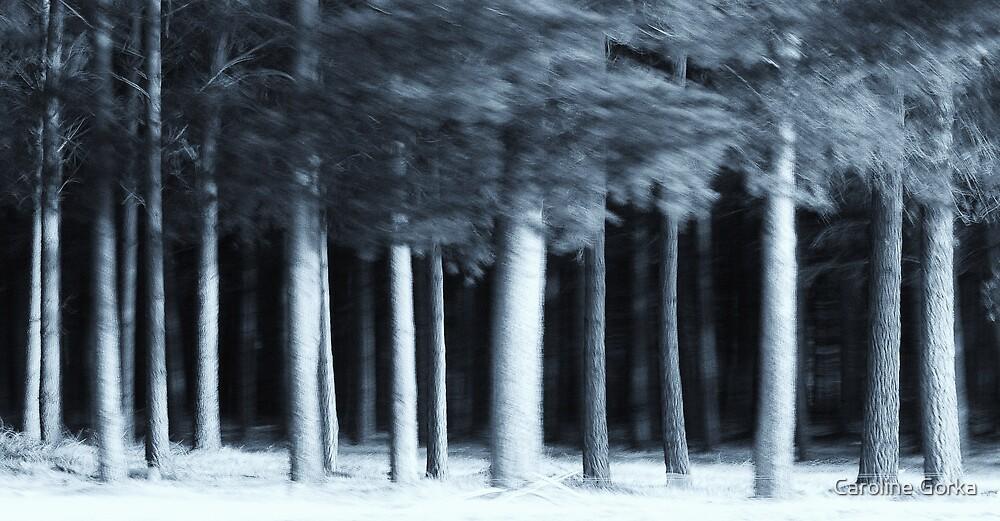 The Wood by Caroline Gorka