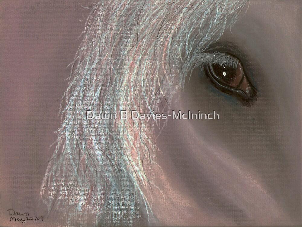 Equine by Dawn B Davies-McIninch