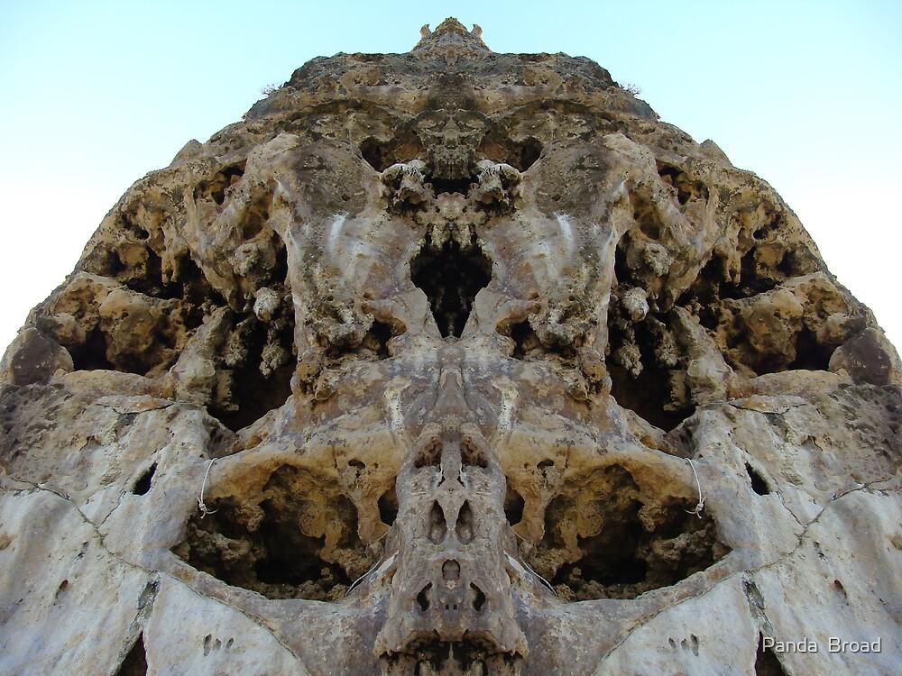 Skull (Bobs Hollow) Margaret River by pandab1jb