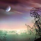 Moon Silence by Igor Zenin