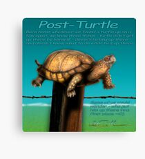 Post Turtle Canvas Print