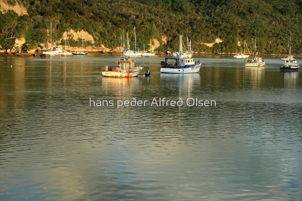 Whitianga Harbour by hans peðer alfreð olsen