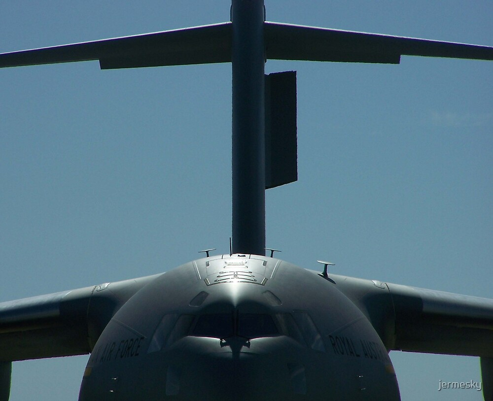 RAAF C-17 Close Up by jermesky