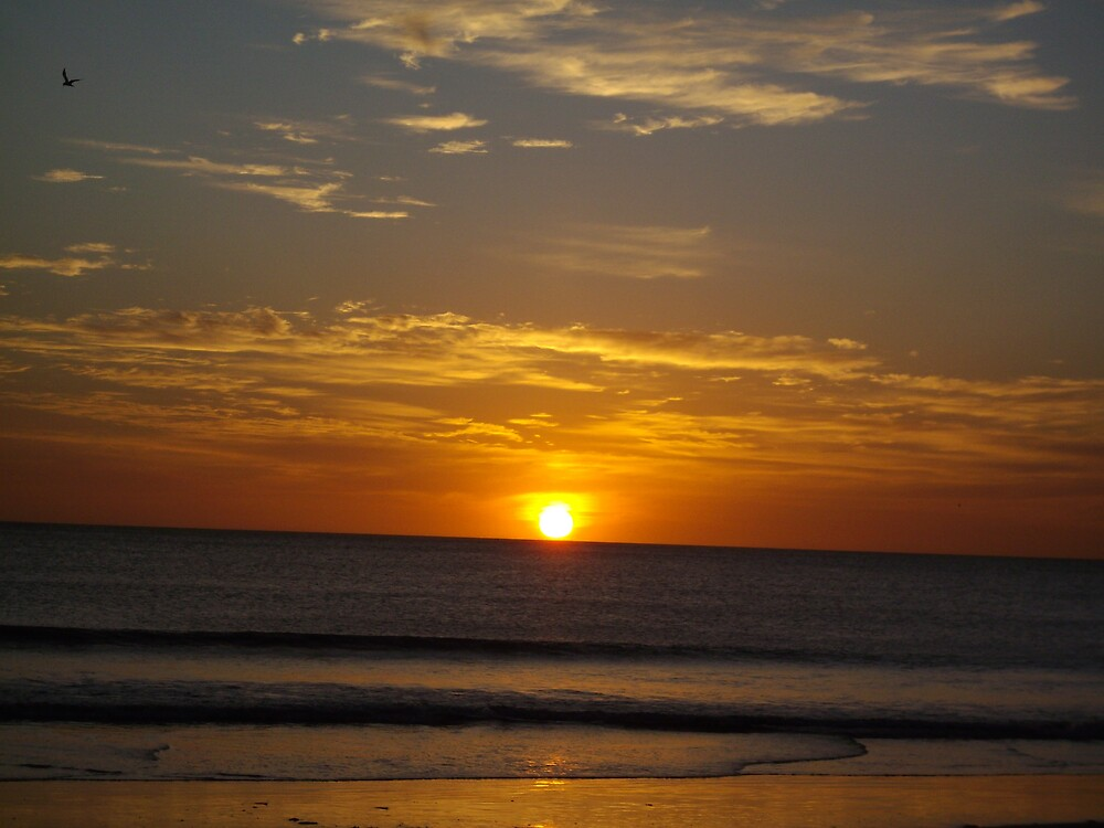 Costa Rican Sunset by clairet