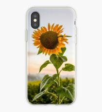 Sunflower   Photo iPhone Case