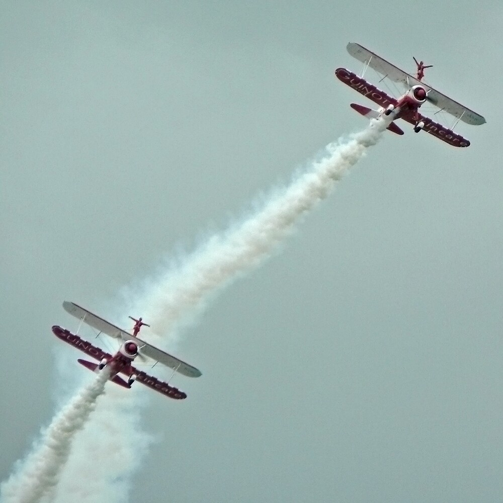 Wing Walkers by abby hughes
