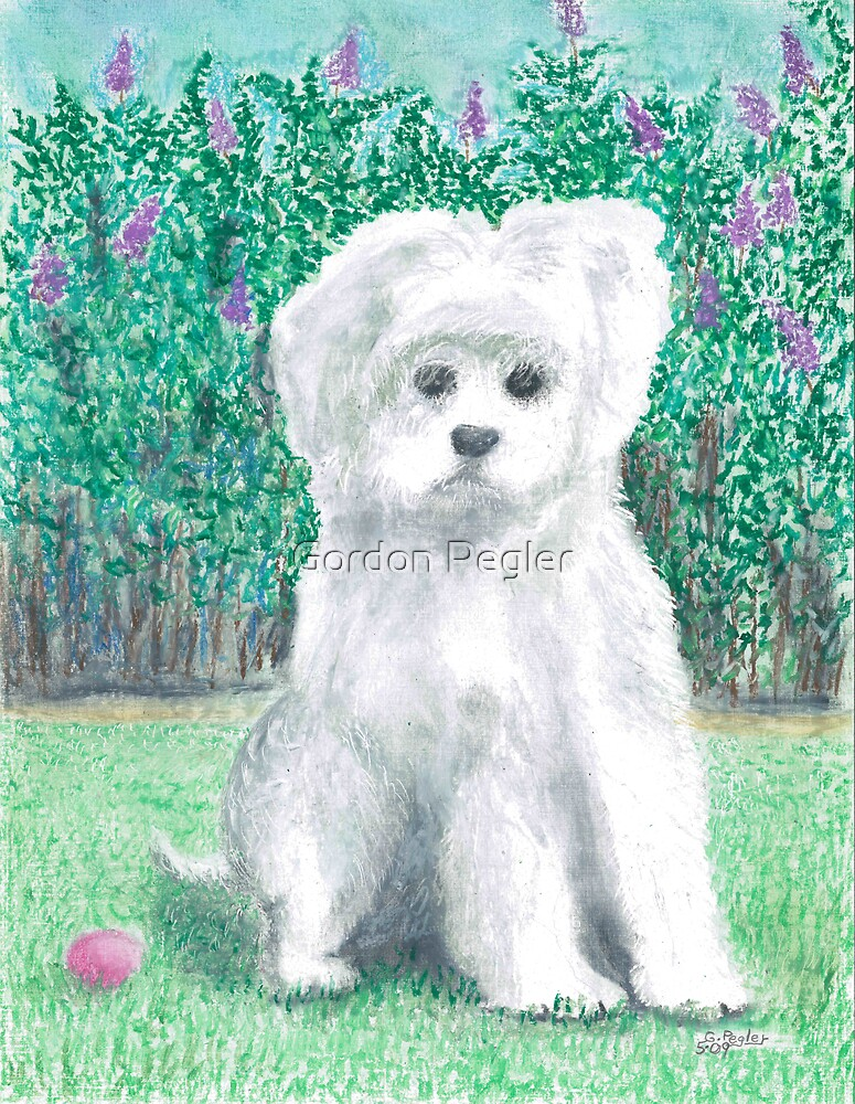 Come play with me -oil pastels by Gordon Pegler