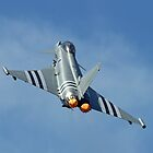 Afterburners On - Eurofighter Typhoon  - Farnborough 2014 by Colin  Williams Photography