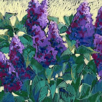 Lilacs. Pastel by kira-culufin