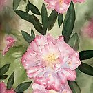 Rhody Delight by Diane Hall