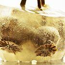 Frozen beauty by Inese