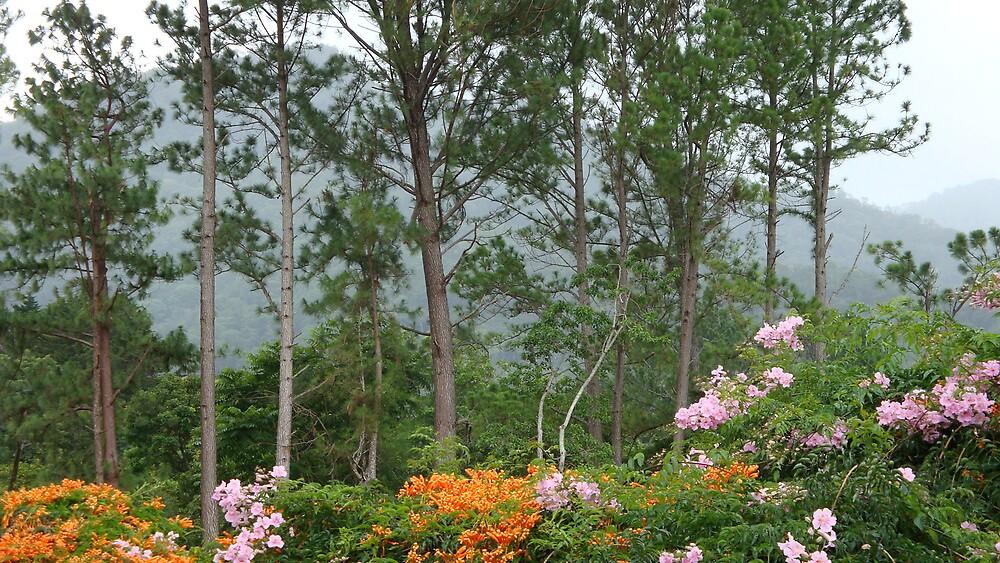 My Garden is Your Garden by BESTPLACE