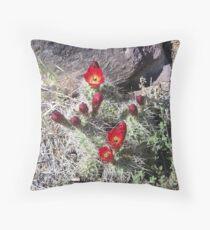 Desert Mountain Cactus Throw Pillow