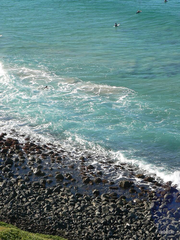 Aqua by Tweetie