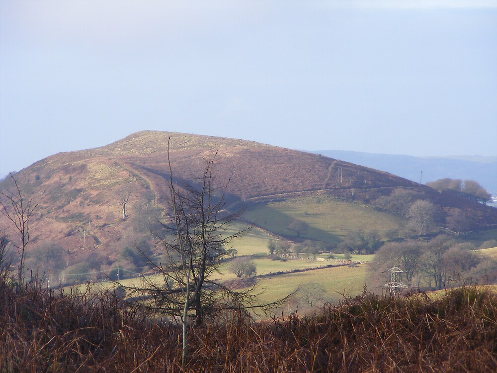 Caerphilly mountain by telle2009