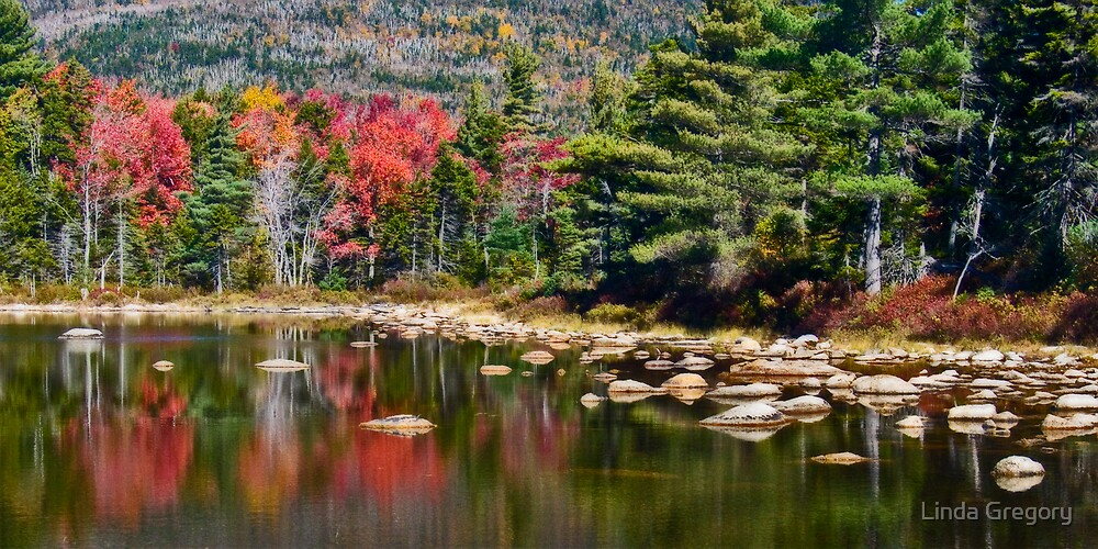 Red Reflections by Linda Gregory