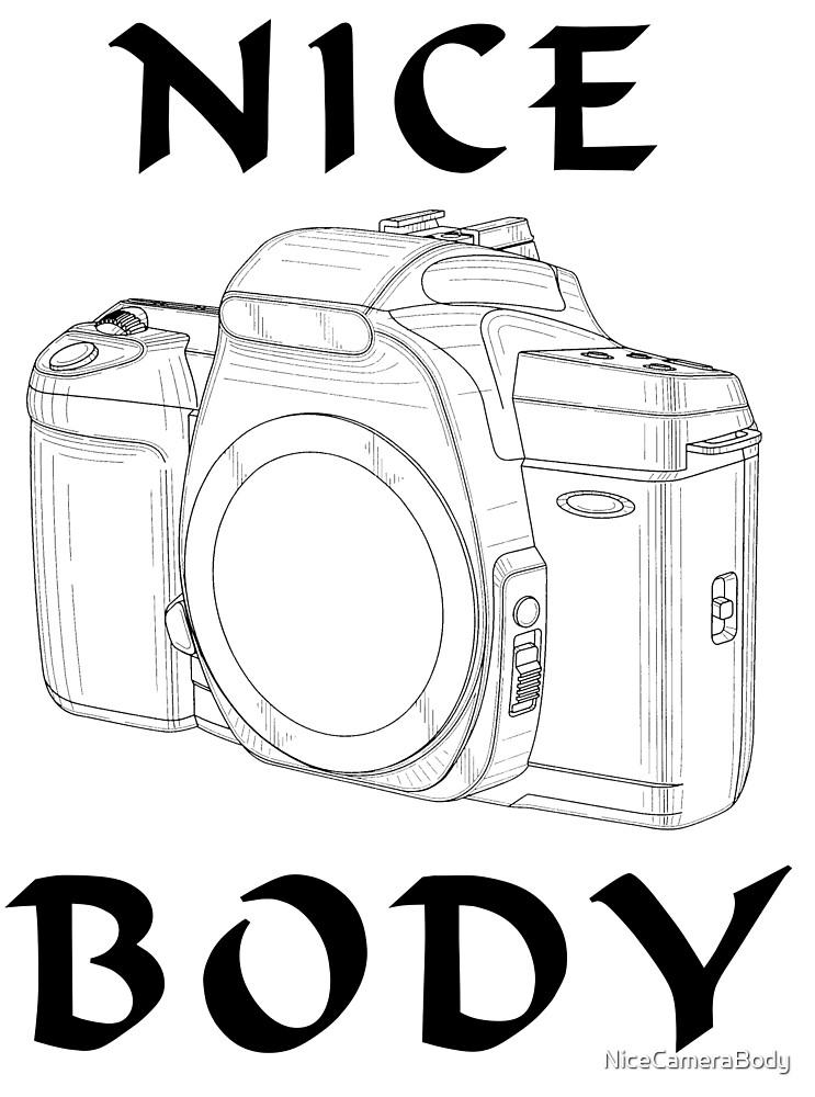Camera Wire Diagram