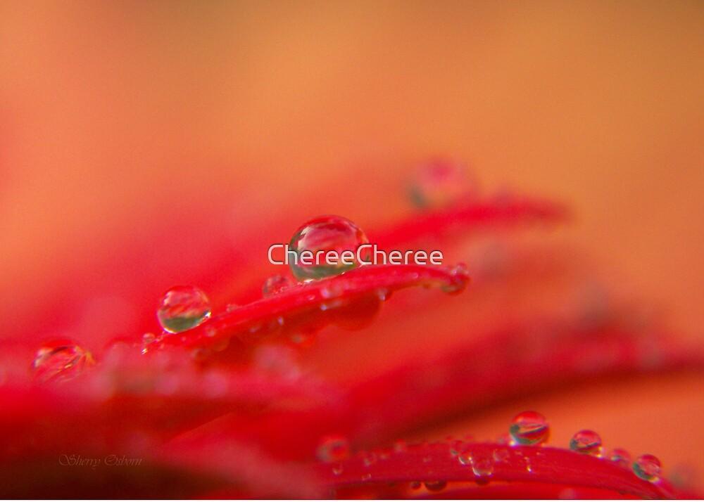 Beaded Gerber by ChereeCheree