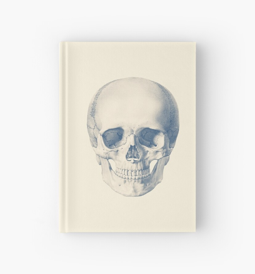 Full Human Skull Front Facing View Vintage Anatomy Hardcover