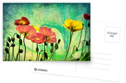 Poppy by LudaNayvelt