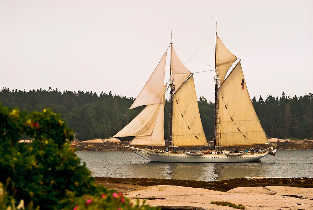Schooner The Mary Day at Stonington, Maine by MarkEmmerson