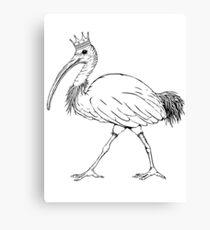 King Ibis - Black Outline Canvas Print