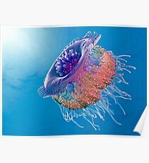 Crown Jellyfish Poster
