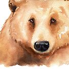 Grizzly Bear Watercolor by Denise Soden
