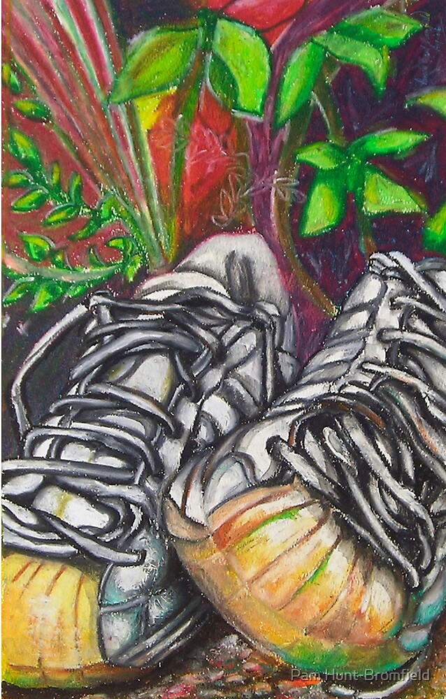'Mission shoes' by Pam Hunt-Bromfield
