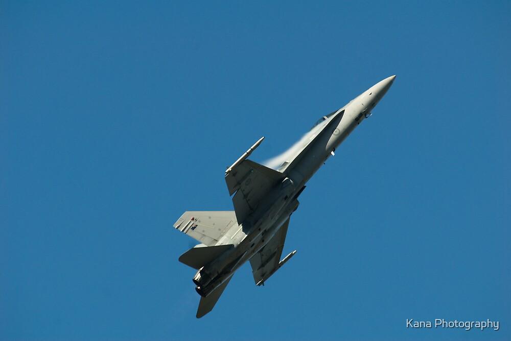 Jet by Kana Photography
