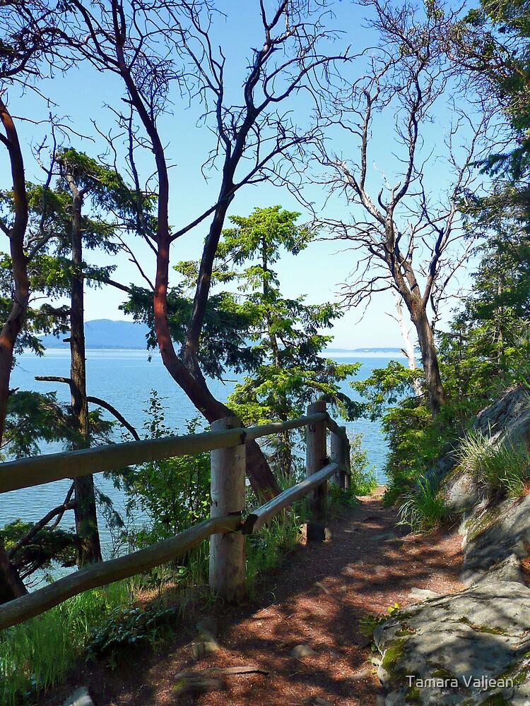 Larrabee Hiking Trail by Tamara Valjean