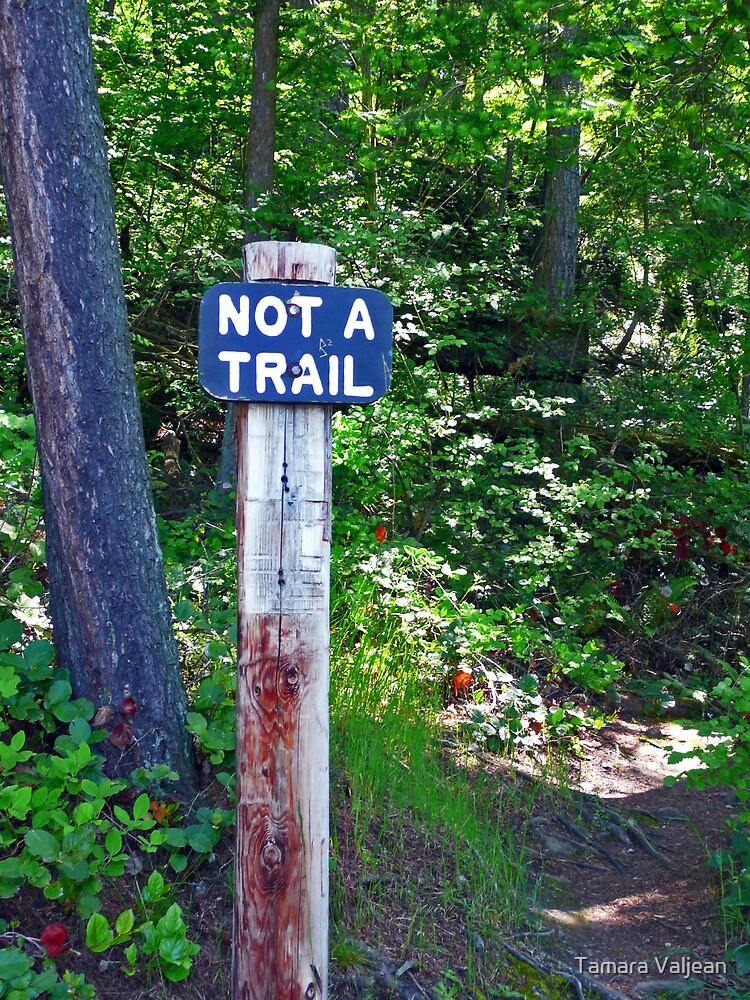 Not A Trail...? by Tamara Valjean
