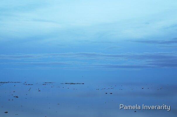 Lake Eyre Blue by Pamela Inverarity