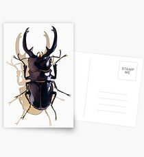 """Odontolabis d. subita"" Stag Beetle Watercolor Postcards"