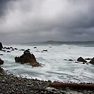 Flax Bay by Ken Wright