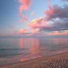 Pink Clouds, Sunset over the Beach by Ryan McGurl