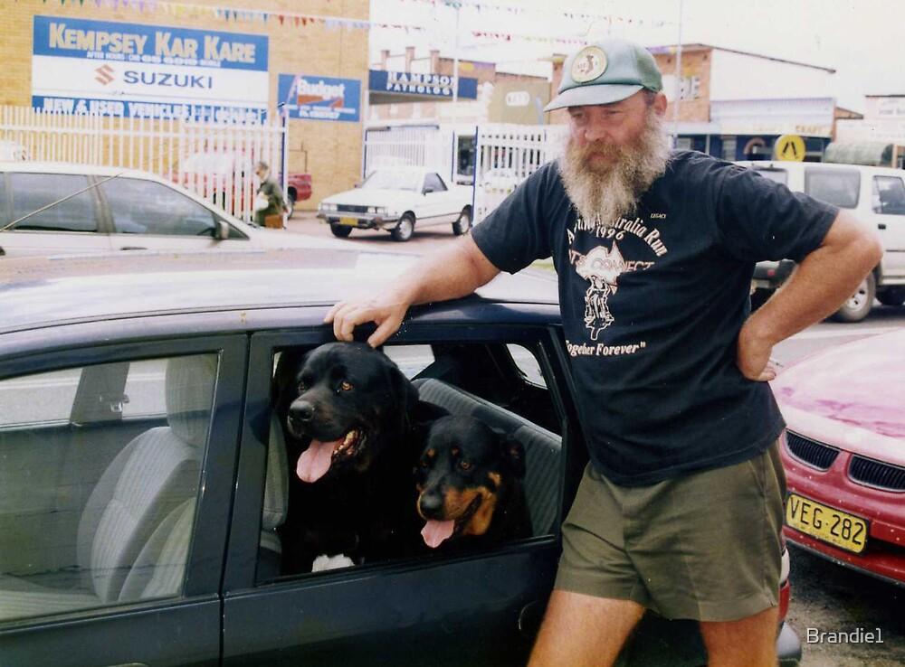 A Dogs Joy Ride. by Brandie1