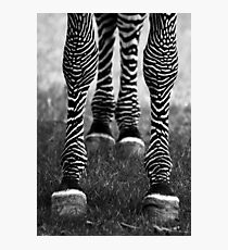 Zeb Legs Photographic Print
