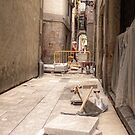 [2009-05-22 _P1210790 _XnView] by Juan Antonio Zamarripa [Esqueda]